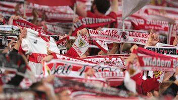 Faninfo FC Energie Cottbus - VfB
