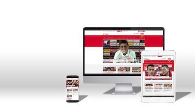 VfB TV